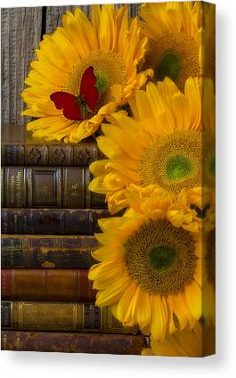 Book Collecting Canvas Prints