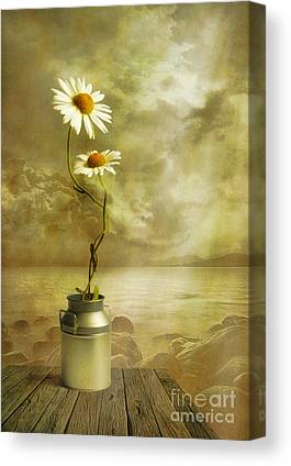 Flowers Digital Art Canvas Prints
