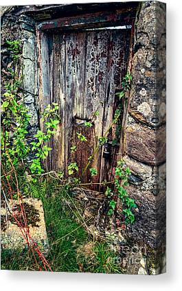Old Door Digital Art Canvas Prints