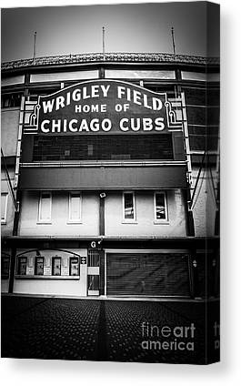 Ballpark Canvas Prints