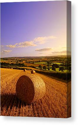 Haybales Canvas Prints