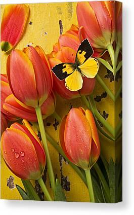 Beautiful Tulips Canvas Prints
