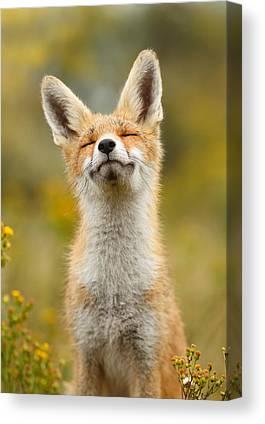 Fox Kits Canvas Prints