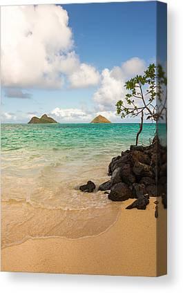 Island Life Canvas Prints