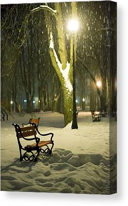 Park Scene Canvas Prints