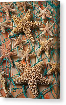 Echinoderm Canvas Prints