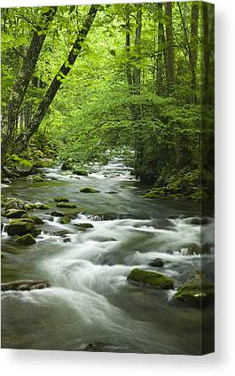 Tennessee River Canvas Prints