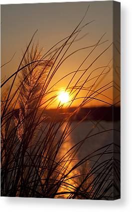 Lake Wylie Canvas Prints