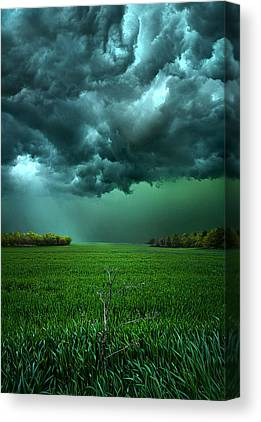 Meadow Canvas Prints