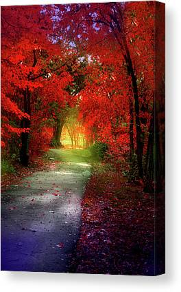 Forestbrook Canvas Prints