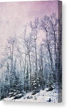 Birch Photographs Canvas Prints