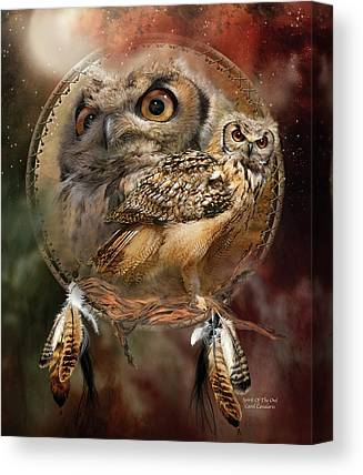 Nocturnal Canvas Prints