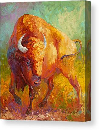 Wild Canvas Prints