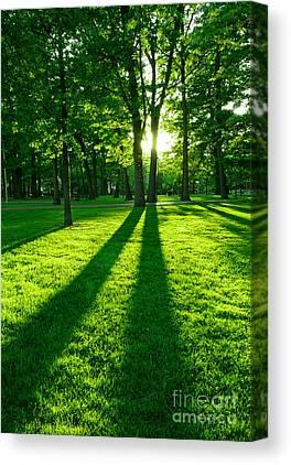 Sun Set Photographs Canvas Prints