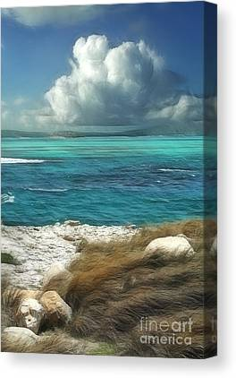 Caribbean Sea Digital Art Canvas Prints