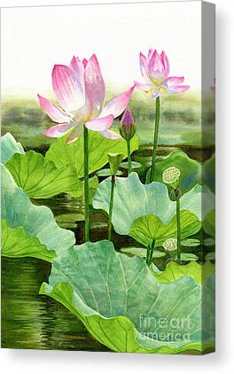 Lotus Seed Canvas Prints