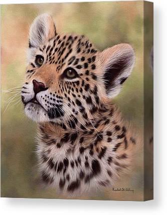 Jaguar Art Canvas Prints