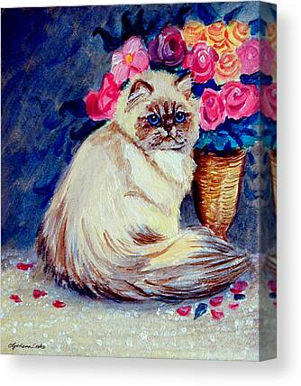 Himalayan Cats Canvas Prints