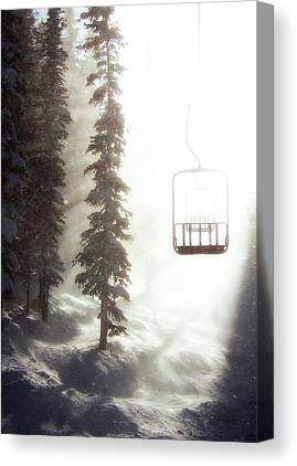 Winter Forest Canvas Prints