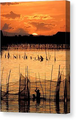 Wade Fishing Canvas Prints