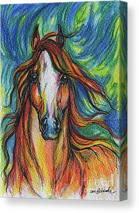 Chestnut Horse Drawings Canvas Prints