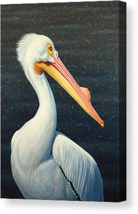 Pelicans Canvas Prints