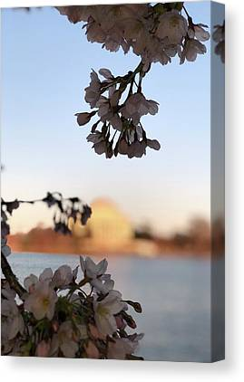 Jefferson Memorial Canvas Prints