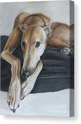 Rescued Greyhound Canvas Prints