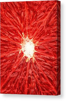 Grapefruit Canvas Prints