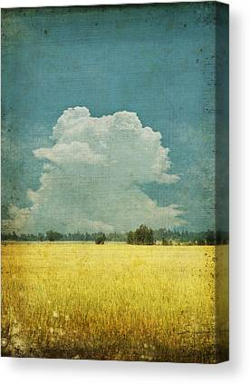 Abstract Fields Canvas Prints