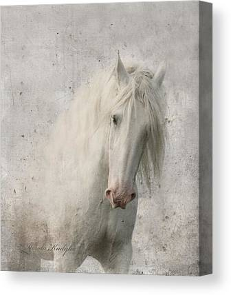 Beautiful Horse Canvas Prints