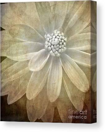 Pollen Canvas Prints