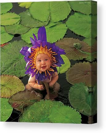 Waterlily Canvas Prints