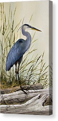 Heron Canvas Prints