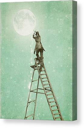 Ladder Canvas Prints