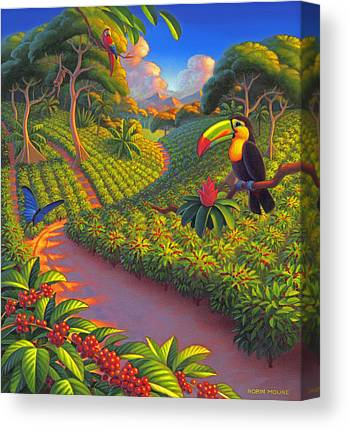 Coffee Plant Canvas Prints
