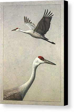 Crane Canvas Prints