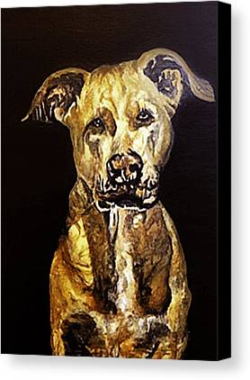 Pitbull Paintings Limited Time Promotions