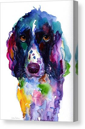 Springer Spaniel Canvas Prints