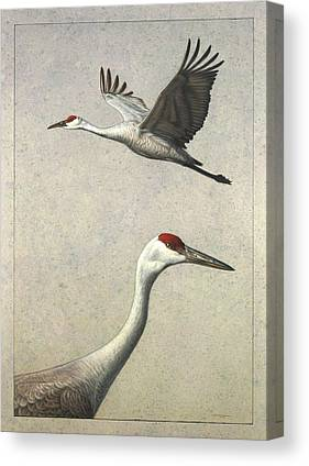 Crane Canvas Prints