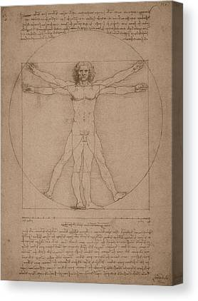 Canon Of Proportions Canvas Prints