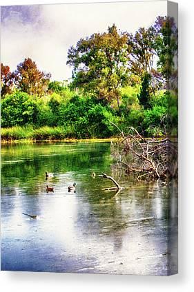 Nature Center Pond Mixed Media Canvas Prints