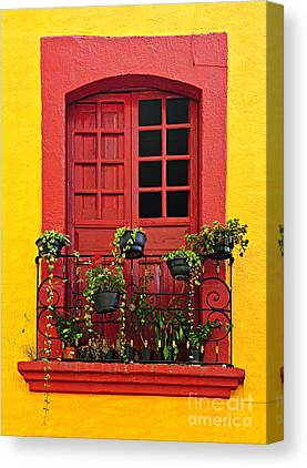 Frame House Canvas Prints