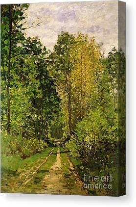 Bois Canvas Prints