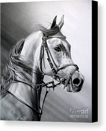 Black And White Portraits Drawings Limited Time Promotions