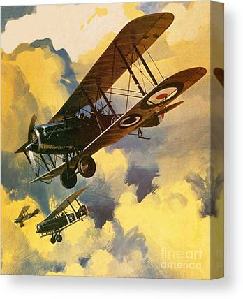 Bi Plane Canvas Prints