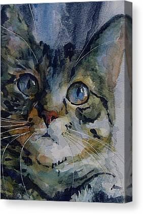 Tabby Canvas Prints