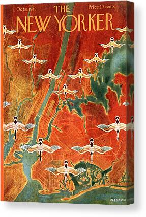 Formation Flying Canvas Prints