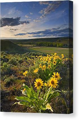 Yakima Valley Canvas Prints