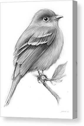Flycatchers Canvas Prints